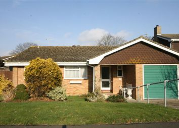 Thumbnail 3 bed detached bungalow for sale in Deerswood Lane, Bexhill-On-Sea