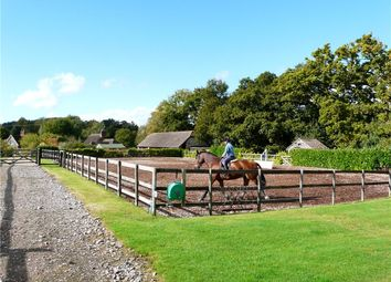 Thumbnail 2 bed equestrian property for sale in Fontmell Magna, Shaftesbury, Dorset