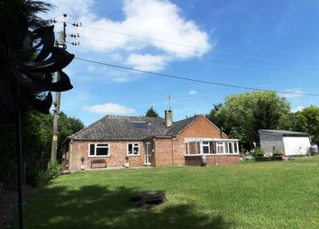 Thumbnail 4 bed bungalow for sale in Swaffham, Norfolk