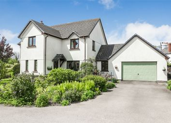 Thumbnail 4 bed detached house for sale in East Street, Sheepwash, Beaworthy, Devon
