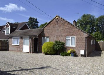 Thumbnail 4 bed detached bungalow for sale in Pond Lane, Hermitage, Berkshire