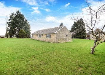 Thumbnail 3 bed bungalow to rent in Nonsuch, Heath Farm Lane, North Leigh