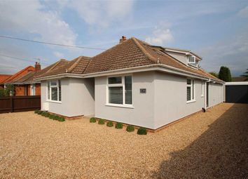 Thumbnail 5 bedroom bungalow for sale in Bell Lane, Kesgrave, Ipswich