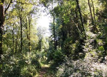Thumbnail Land for sale in Lydcott Wood, Hessenford, Near Looe, Cornwall