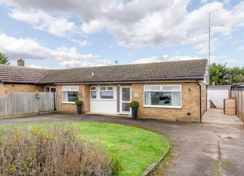 3 bed semi-detached bungalow for sale in Green Trees Avenue, Cold Norton, Chelmsford CM3