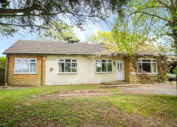 Thumbnail 3 bedroom detached bungalow for sale in Ingatestone Road, Highwood, Chelmsford
