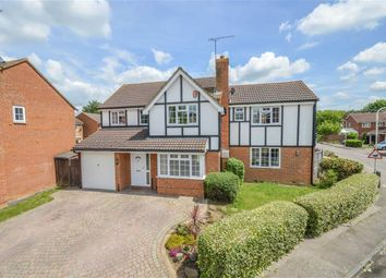 Thumbnail 5 bedroom detached house for sale in Lawrence Avenue, Stanstead Abbotts, Hertfordshire