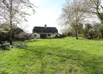 Thumbnail 3 bed cottage for sale in Fir Tree Cottage, Keysoe