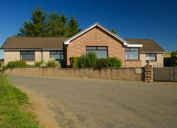 Thumbnail 3 bed detached bungalow for sale in Knockenbaird, Insch