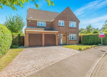 Thumbnail 5 bedroom detached house for sale in Captains Close, Swaffham