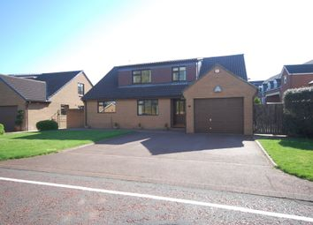 Thumbnail 4 bed detached bungalow to rent in The Willows, Carrville, Durham