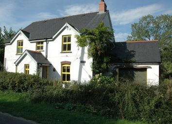 Thumbnail 4 bed detached house to rent in Cenarth, Newcastle Emlyn
