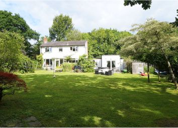Thumbnail 4 bed detached house for sale in Broadmead, Sway