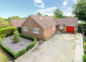 Thumbnail 4 bedroom detached bungalow for sale in Dalewood, Basingstoke