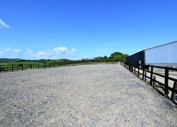 Thumbnail Farm for sale in Manordeilo, Llandeilo