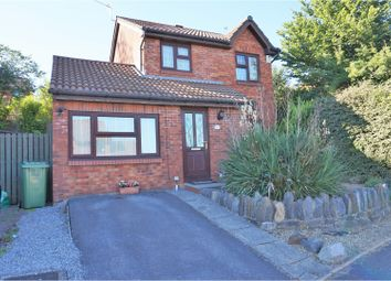 Thumbnail 3 bed detached house for sale in Timothy Rees Close, Danescourt