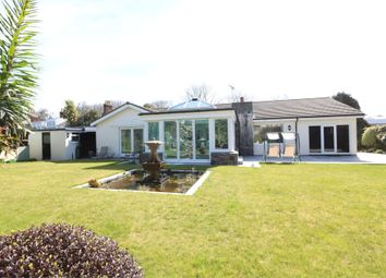 Thumbnail 3 bed detached house to rent in L'abri, Les Merriennes, St Martin's