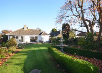 Thumbnail 2 bed detached bungalow for sale in Knotts Close, Child Okeford, Blandford Forum