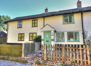 Thumbnail 2 bed terraced house for sale in Norwich Road, Tacolneston, Norwich