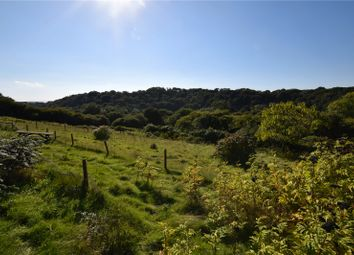 Thumbnail 4 bed detached house for sale in St. Breward, Bodmin