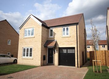 Thumbnail 4 bedroom detached house to rent in Apple Tree Close, Fenstanton, Huntingdon