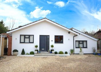Thumbnail 4 bed bungalow for sale in Osborne Road, Wokingham, Berkshire