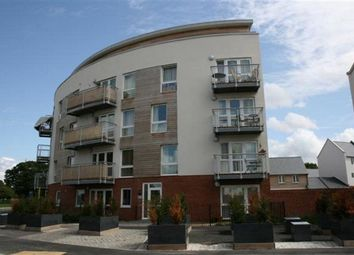 2 bed flat to rent in Mallory Road, Basingstoke RG24