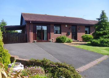Thumbnail 3 bed bungalow for sale in Mariners View, Amble, Morpeth