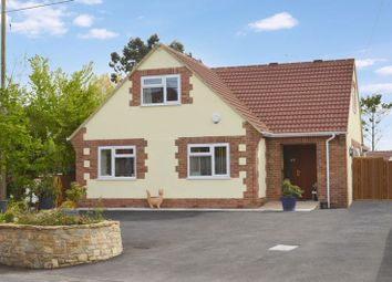 Thumbnail 4 bed detached house for sale in Pettridge Lane, Mere, Warminster