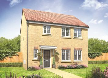 "Thumbnail 3 bed detached house for sale in ""The Whitehall"" at Burwell Road, Exning, Newmarket"