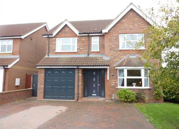 Thumbnail 4 bed detached house for sale in Albery Way, New Waltham, Grimsby