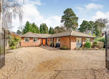 Thumbnail 5 bed detached house for sale in Bagshot Road, Woking