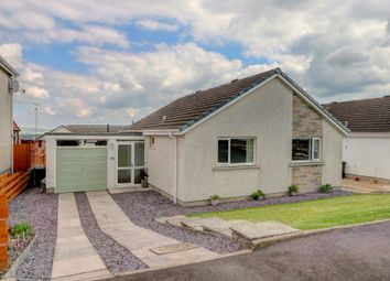 Thumbnail 2 bed bungalow for sale in Maplebank Loaning, Dumfries