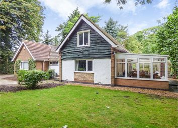 Thumbnail 3 bed detached bungalow for sale in 15A Ryelands Crescent, Ashton-On-Ribble, Preston, Lancashire