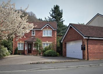 Thumbnail 4 bed detached house to rent in Tinmans Green, Redbrook, Monmouth