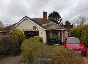Thumbnail 4 bed bungalow to rent in West Drive, Suffolk