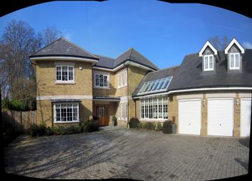 Thumbnail 6 bed detached house to rent in Queens Hill Rise, Ascot
