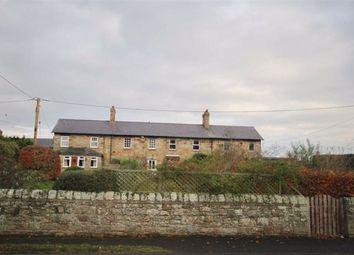 Thumbnail 2 bed cottage for sale in The Village, Fenwick, Northumberland