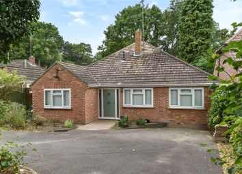 Thumbnail 3 bed detached bungalow for sale in School Hill, Sandhurst, Berkshire