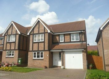 Thumbnail 4 bed detached house to rent in Godrevy Grove, Tattenhoe, Milton Keynes