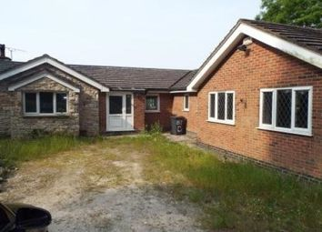 Thumbnail 3 bed detached bungalow to rent in Grange Road, Holway, Holywell