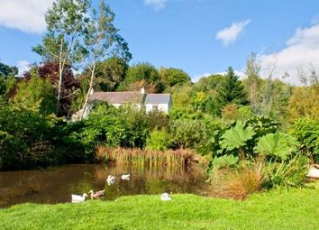 Thumbnail 4 bed property to rent in Penvale, St. Gluvias, Penryn