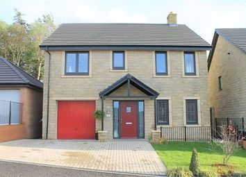 Thumbnail 4 bedroom detached house for sale in Dobson Gardens, Acomb