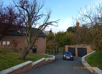Thumbnail 4 bed detached house to rent in Willow Close, Wortwell, Harleston