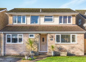 Thumbnail 4 bed detached house to rent in Orchardlea, Swanmore, Southampton
