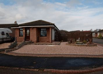 Thumbnail 2 bed detached bungalow for sale in Doo'cot Brae, Alloa
