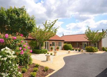 Thumbnail 2 bed bungalow to rent in The Courtyard, Poulshot, Wiltshire