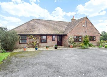 Thumbnail 4 bed detached bungalow for sale in College Arms Close, Stour Row, Shaftesbury, Dorset