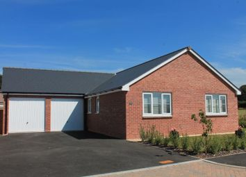 Thumbnail 2 bed detached bungalow for sale in Vineton Place, Feniton, Honiton