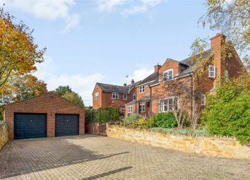 Thumbnail Detached house for sale in Brook Lane, Great Easton, Market Harborough, Leicestershire
